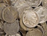 1923 Buffalo Nickels | 52-Nickel Lot